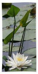Water Lily In Bloom Beach Towel