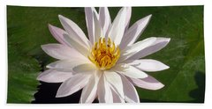 Beach Towel featuring the photograph Water Lily by Sergey Lukashin