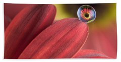 Waterdrop On Flower Petal Beach Towel
