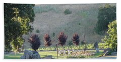 Beach Towel featuring the photograph Wedding Grounds by Shawn Marlow