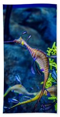 Weedy Seadragon Beach Towel by Alex Grichenko