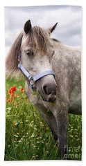 Welsh Pony Lulu Beach Towel