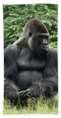 Western Lowland Gorilla Male Beach Towel by Konrad Wothe