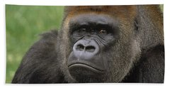 Western Lowland Gorilla Silverback Beach Towel by Gerry Ellis