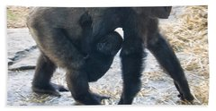 Western Lowland Gorilla With Baby Beach Towel