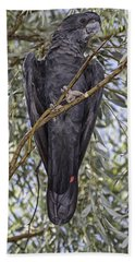 What Are You Looking At Beach Towel by Douglas Barnard