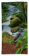 Beach Towel featuring the photograph Whatcom Falls 1 by Jacqui Boonstra