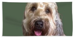 Beach Towel featuring the photograph Wheaton Terrier by Karen Zuk Rosenblatt