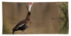 Whistling Duck Whistling Beach Towel by Bryan Keil