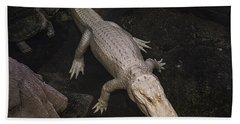 White Alligator Beach Towel
