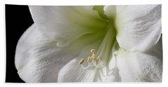 White Amaryllis Beach Towel