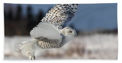 White Angel - Snowy Owl In Flight Beach Sheet