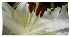White Asiatic Lily Beach Towel by Jacqueline Athmann