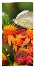 White Butterfly On Mexican Flame Beach Towel