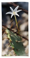 Beach Sheet featuring the photograph White Cactus Flower by Erika Weber