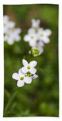 White Cuckoo Flowers Beach Sheet by Christina Rollo