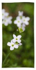 White Cuckoo Flowers Beach Sheet by Christina Rollo