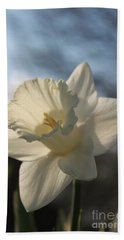 White Daffodil Beach Sheet