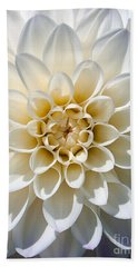 Beach Towel featuring the photograph White Dahlia by Carsten Reisinger