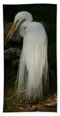 White Egret In The Shadows Beach Sheet by Myrna Bradshaw