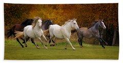 White Horse Vale Lipizzans Beach Towel