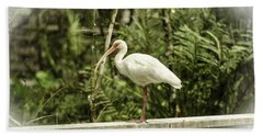 White Ibis Beach Sheet