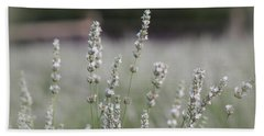 White Lavender Beach Towel by Lynn Sprowl