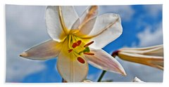 White Lily Flower Against Blue Sky Art Prints Beach Sheet