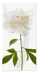 White Peony Flower On White Beach Towel