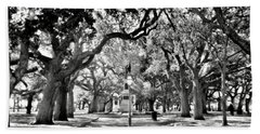 White Point Gardens At Battery Park Charleston Sc Black And White Beach Towel