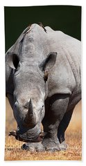 White Rhinoceros  Front View Beach Towel