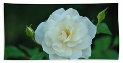 White Rose With Two Buds Beach Towel