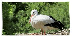 Beach Sheet featuring the photograph White Stork  by Teresa Zieba