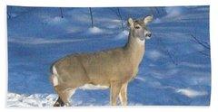 Beach Towel featuring the photograph White Tail Deer by Brenda Brown