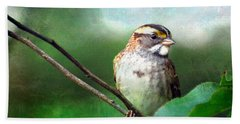 White-throated Sparrow Beach Sheet by Kerri Farley