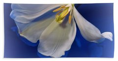 White Tulip On Blue Beach Sheet