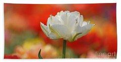 White Tulip Weisse Gefuellte Tulpe Beach Towel