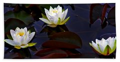 Beach Towel featuring the photograph White Water Lilies by Nina Ficur Feenan
