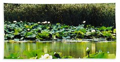 Beach Towel featuring the photograph White Water Lotus  by Shawna Rowe