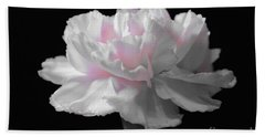 Beach Towel featuring the digital art White With Pink Carnation by Jeannie Rhode
