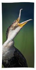 Whitebreasted Cormorant Beach Towel