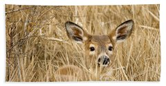 Whitetail In Weeds Beach Sheet