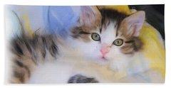 Wide Eyed Kitten Beach Towel