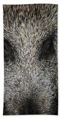 Wild Boar Sus Scrofa Beach Towel