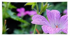 Beach Towel featuring the photograph Wild Geranium Flowers by Clare Bevan