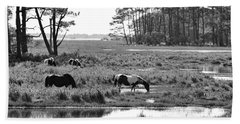Wild Horses Of Assateague Feeding Beach Towel by Dan Friend