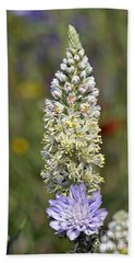 Beach Sheet featuring the photograph Wild Mignonette Flower by George Atsametakis