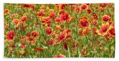 Beach Sheet featuring the photograph Wild Red Daisies #1 by Robert ONeil