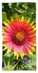 Beach Sheet featuring the photograph Wild Red Daisy #3 by Robert ONeil