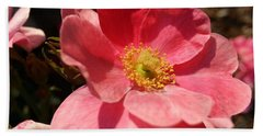 Beach Towel featuring the photograph Wild Rose by Caryl J Bohn